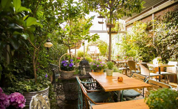 El Jardín de Salvador Bachiller
